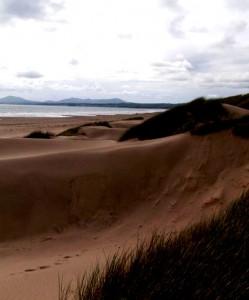 Ein Strand mit Dunen und Meer